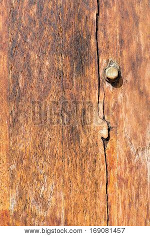 Old wood texture with metal rivet close up