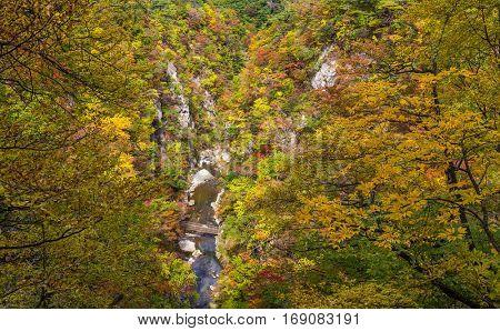 Autumn scenery of Naruko Gorge