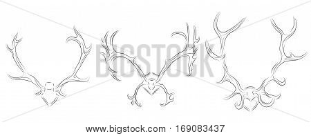 Set of contour drawing of different deer antlers. Vector element for your design