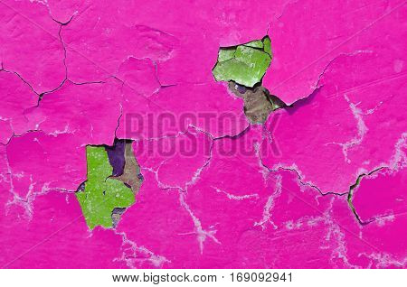 Texture background of pink peeling texture paint on the old rough texture surface. Peeling pink paint on old concrete texture surface. Closeup of pink peeling paint on the wall