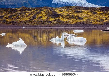 Picturesque cold lake formed by glacier meltwater. Summer in Iceland. The grand glacier Vatnajokull is melting at the edges, sliding to the ocean. The concept of extreme northern tourism