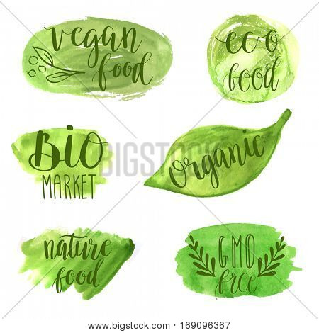 Eco, nature, vegan, bio food logos. Handwritten lettering. Vector elements for labels, logos, badges, stickers or icons. Calligraphic and typographic collection on green watercolor banners.