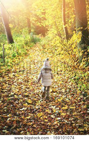 Little Girl Walking Away On Autumn Leaves