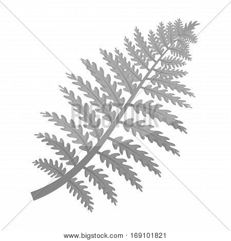 Prehistoric plant icon in monochrome design isolated on white background. Dinosaurs and prehistoric symbol stock vector illustration.