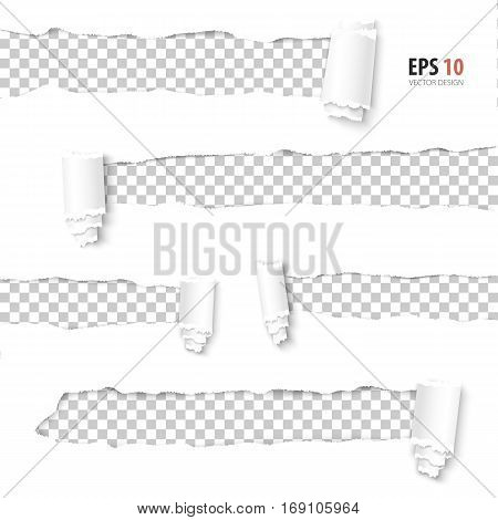 Torn paper vector. Collection of holes in white paper with transparent background. Torn sides with ripped paper edges. Torn side set of banners with space for text. Torn paper template design