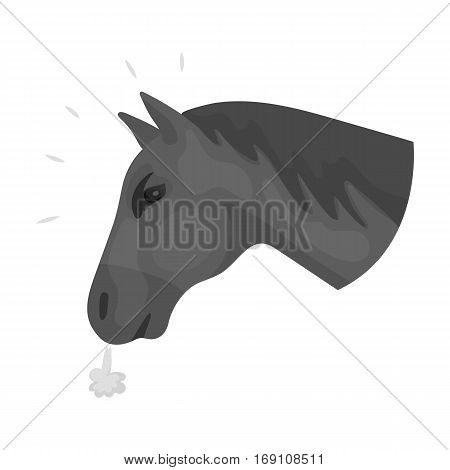 Horse s head icon in monochrome design isolated on white background. Rodeo symbol stock vector illustration.