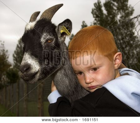 Kid And The Goat