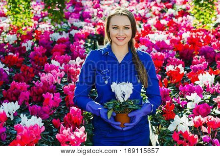 garden center worker holding a flower in a pot, standing in the center of the greenhouse and smiling at the camera