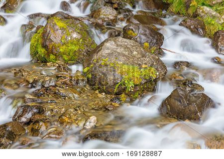 a scenic mountain stream in Alaska flows over moss covered rocks