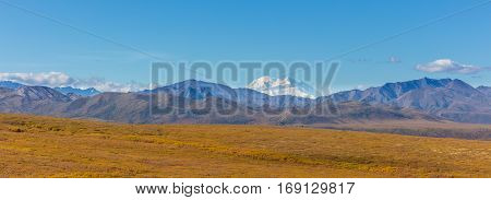 a scenic Denali National Park panoramic landscape