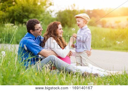 Beautiful young family on a walk in green sunny summer nature, little boy blowing dandelion. Rear view.