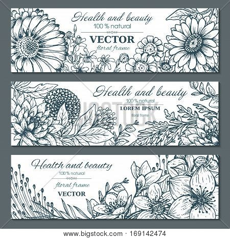 Set of three horizontal banners with beautiful flowers and plants in graphic style. Vector floral headers