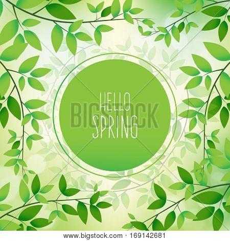 Hello Spring Vector Design. Elements For The Spring Season. Vector Illustration