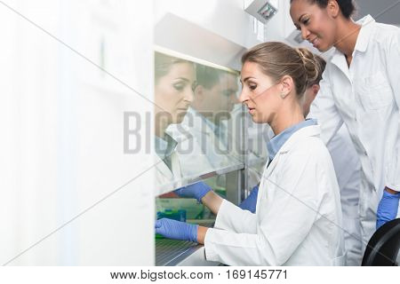 Researcher and lab assistant working together on scientific samples