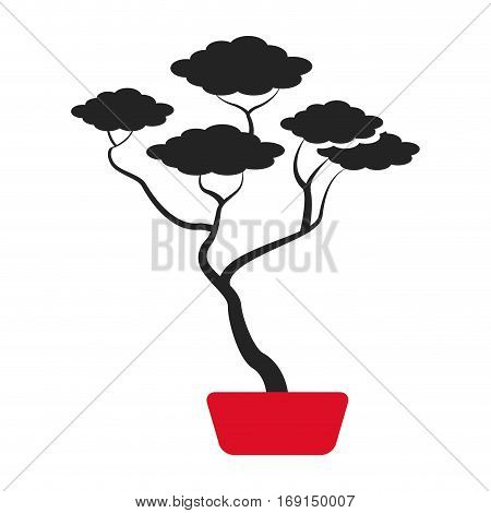 bonsai tree japanese ornament icon vector illustration