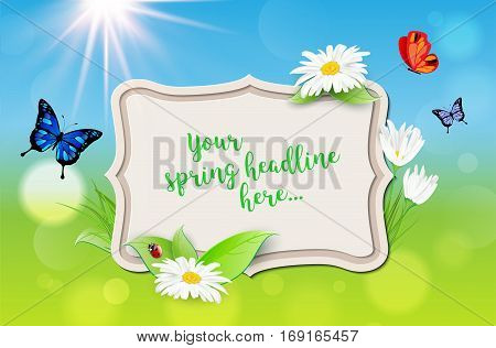 Decorative frame with spring background - plants daisy flowers butterflies ladybug sun. Place for your message. Vector illustration.