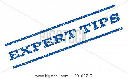 Expert Tips watermark stamp. Text caption between parallel lines with grunge design style. Rotated rubber seal stamp with scratched texture. Vector blue ink imprint on a white background.