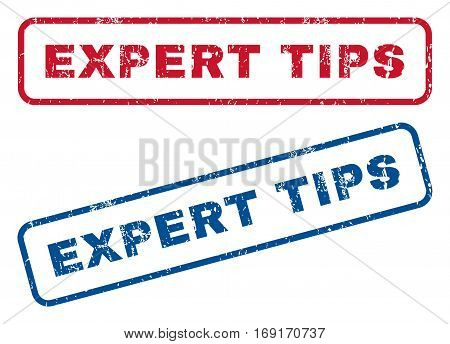 Expert Tips text rubber seal stamp watermarks. Vector style is blue and red ink tag inside rounded rectangular banner. Grunge design and dust texture. Blue and red signs.