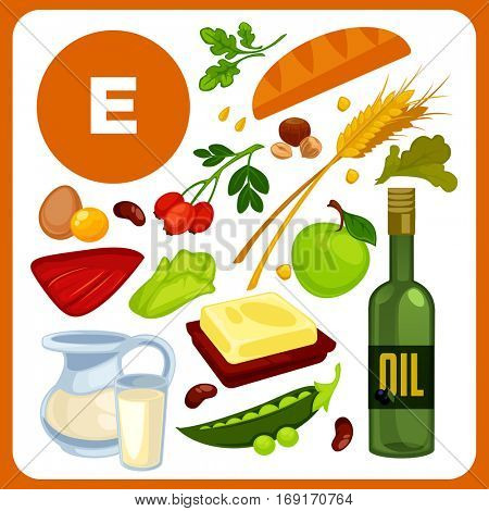 Set with illustrations of food with vitamin E. Ingredients for health: oil, bread and butter, pea, liver, rose hips. Healthy nutrition, diet with product antioxidant sources. Vector cartoon icons
