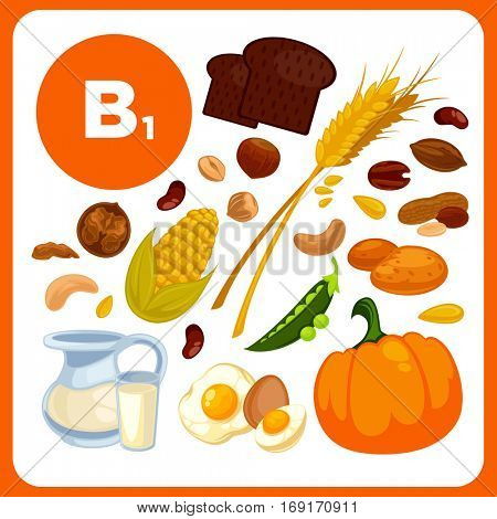 Collection of symbol food with vitamin B1. Illustration of ingredients for health: wheat, pea, bread, pumpkin, eggs, nuts. Healthy nutrition, diet with B 1 sources. Vector cartoon icons set for design