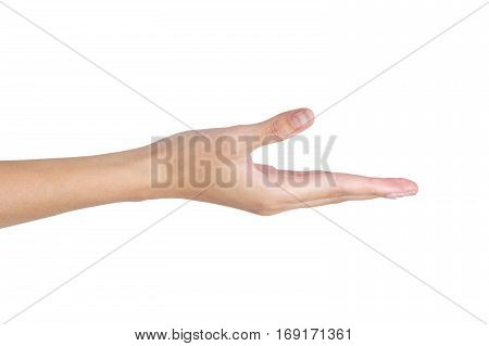 Woman's hand holding something empty isolated on white background.