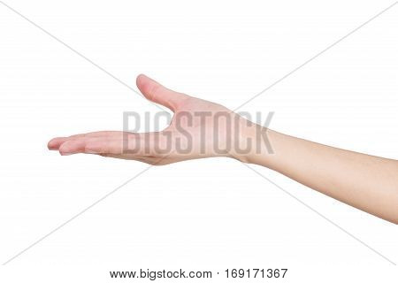 Woman's hand holding something empty isolated on white background.