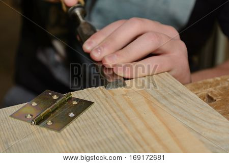 Carpenter working on wood with a chisel for a hinge - close up
