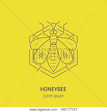 Honeybee in comb. Vector line logo. Perfect brand symbol for natural company bio product.