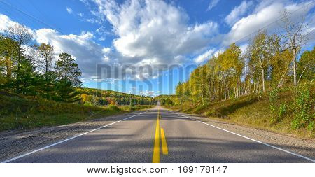 Sunny road to anywhere, single point perspective down a country highway in summer.  Warm day to drive or travel to anywhere.