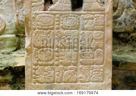 Ancient city of Yaxchilan hidden in the jungle in the borderland of Mexico and Guatemala Ancient Mayan hieroglyphs