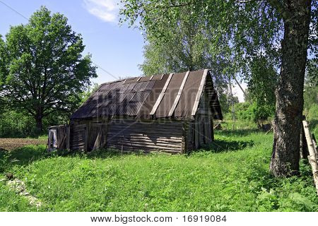 rural house amongst spring herb