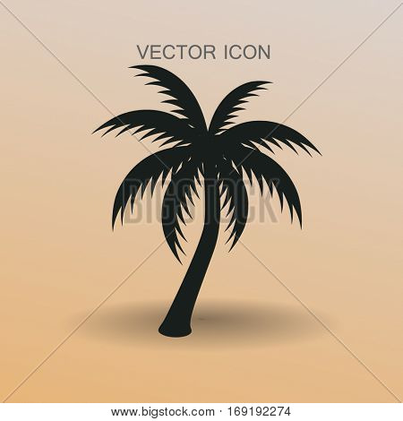 palm tree icon vector illustration