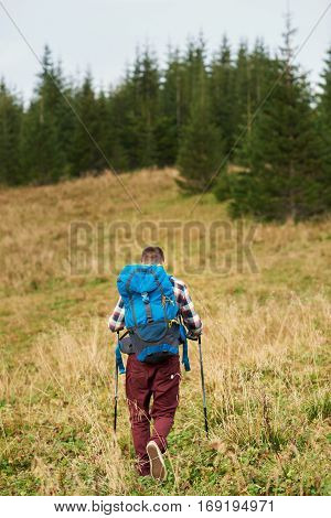 Rearview of a young man wearing a backpack and carrying trekking poles walking up a hill towards a forest
