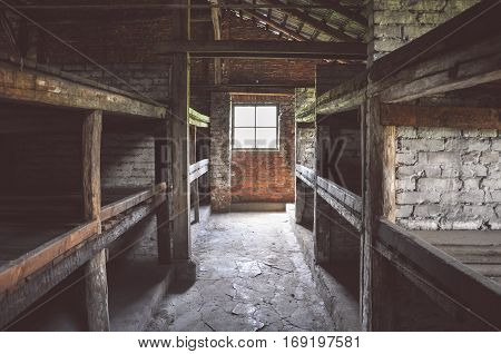 Sleeping bunk in the barracks of Auschwitz-Birkenau concentration camp, Poland
