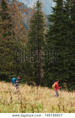 Two young men wearing backpacks and carrying trekking poles walking in a field while hiking in the wilderness