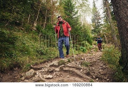 Two young men wearing backpacks and carrying trekking poles walking down a forest trail while hiking in the wilderness