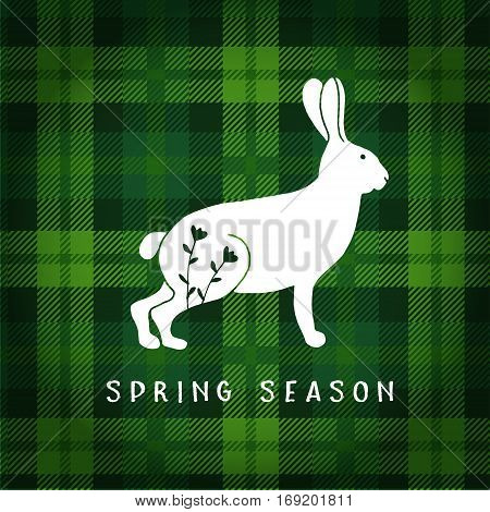 Spring or Easter greeting card, invitation. Illustration of white hare or rabbit. Tartan checkered plaid, vector illustration background.