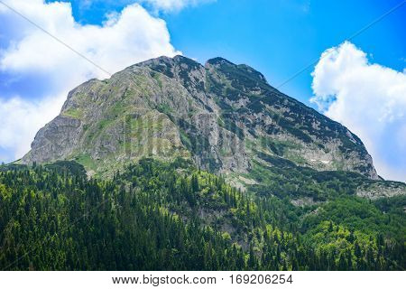 Beautiful Medjed (Bear) Peak with Green Forest. Mountains in the National Park Durmitor, Dinaric Alps, Montenegro