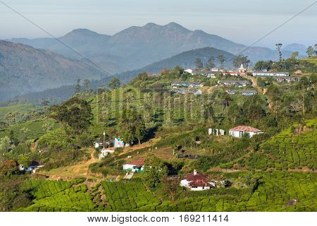 Houses for plantation workers in Munnar tea plantations, Kerala,  India