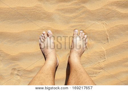 Barefoot in the golden sand of Liwa Oasis. Emirate of Abu Dhabi United Arab Emirates