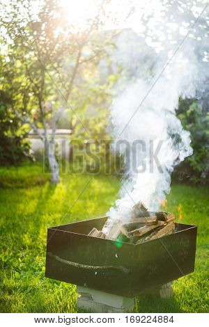 Firewood buring at campfire in the park during holidays poster