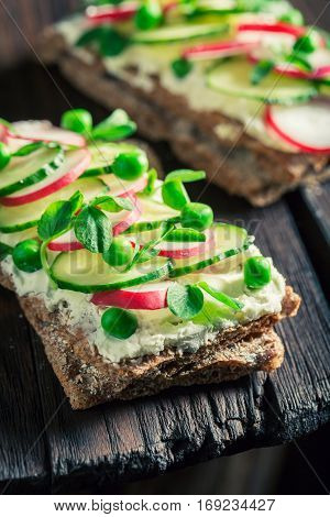 Fresh Sandwich With Fromage Cheese, Avocado And Crunchy Bread