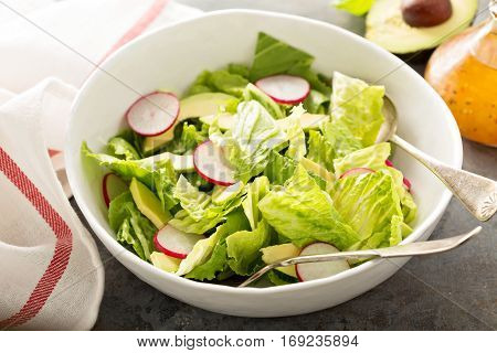 Fresh and healthy salad with romaine, radishes and avocado
