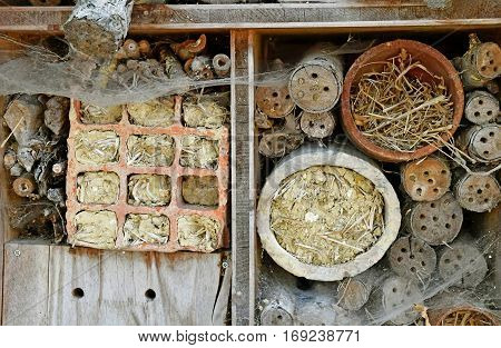 Thiverval Grignon France - august 13 2016 : close up of an insect hotel in Agroparistech farm