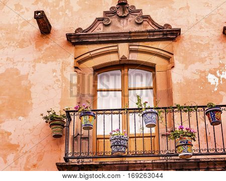 Brown Wall Window Flower Parts San Miguel Allende Mexico