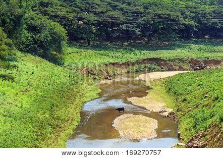 Scenic tropical landscape with river in Sri Lanka