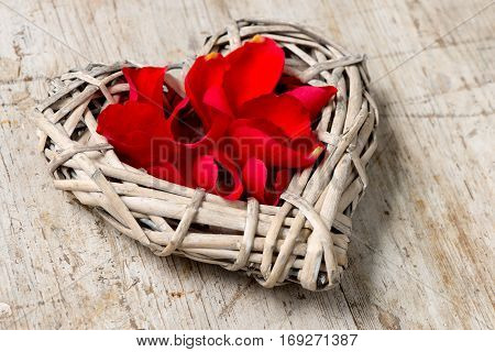 Closeup Of Wicker Heart Filled With Red Rose Petals