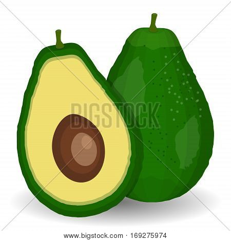 Realistic vector avocados illustration. Whole and cut avocado. Avocado pieces set isolated on white background design element organic food. Healthy vegetables and vegetarian food. Fresh organic food healthy eating .