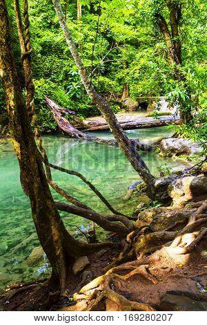 Forest Erawan freshness after the rain in Kanchanaburi Thailand