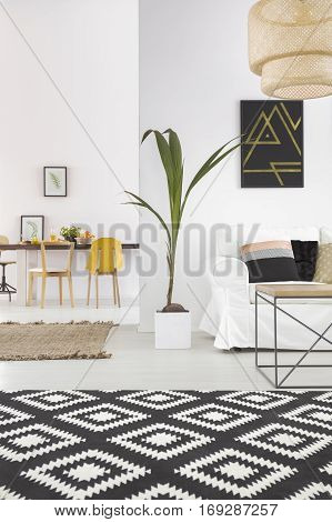 White Home Interior With Carpet